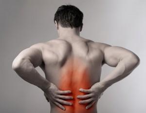 Rückenschmerz durch die richtige Einrichtung vermeiden